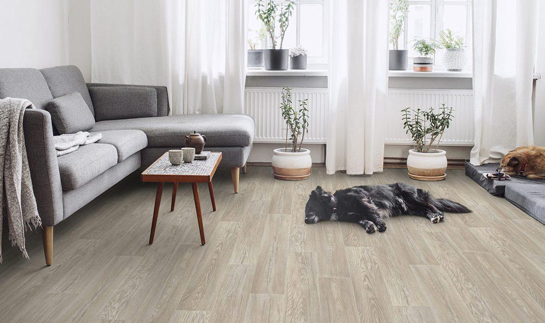 ¿Qué suelo es mejor para una casa?